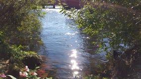 Avbrott på floden vid solsken Royaltyfri Fotografi