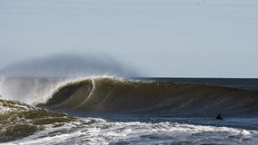 Avbrottsvåg med surfaren royaltyfri foto