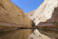 Avdat Canyon Stock Photography