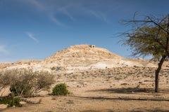 Avdat National Park Royalty Free Stock Photography