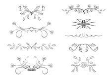 Avdelare - beståndsdelar med blommor Royaltyfri Bild