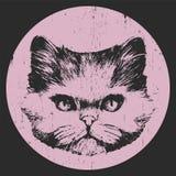 ave kot ja akwarela malowałem perskie obrazka portreta akwarele Zdjęcie Stock