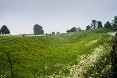 Avebury Henge Wiltshire Zlany Kindom fotografia royalty free