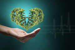 Avec amour à la nature Image stock