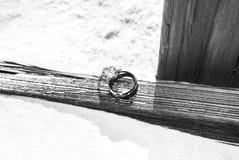 Avec ces anneaux Images stock