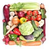 Avec des légumes dans un grand dos. Photos stock