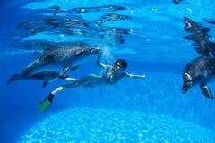 Avec les dauphins Image libre de droits