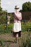 avegetable trädgårds- scarecrow Arkivbild