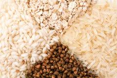Aveia, arroz e trigo mourisco Foto de Stock Royalty Free