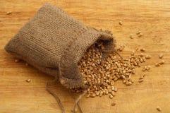 Aveia em flocos do trigo em um saco da lona na madeira Imagem de Stock