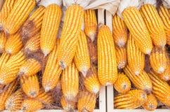 Aveia em flocos e sementes do milho Imagem de Stock