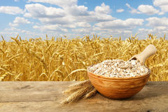 A aveia ou o trigo lascam-se na bacia Fotos de Stock Royalty Free