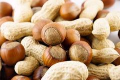 Avelã e amendoins Imagens de Stock