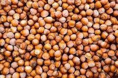 Avelã orgânica fresca crua Em Shell Nuts Alimento saudável no mercado do fazendeiro foto de stock