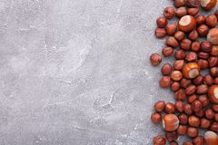 Avellana deliciosa en un fondo concreto gris imagen de archivo libre de regalías