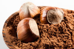 Avellana. Tuercas en polvo de cacao Fotos de archivo libres de regalías