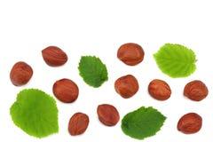 Avellanas con las hojas aisladas en el fondo blanco Visión superior Fotografía de archivo