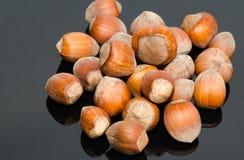 Avellanas en shell Fotografía de archivo