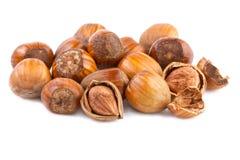 Avellanas Nuts en el fondo blanco Fotografía de archivo libre de regalías