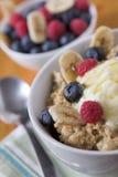 Avena & frutta del porridge Fotografie Stock Libere da Diritti