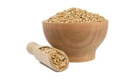 Avena in ciotola di legno e mestolo isolati su fondo bianco nutrizione bio- Ingrediente di alimento naturale fotografia stock libera da diritti