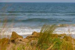 Avena y rocas del mar en la playa Imagen de archivo libre de regalías