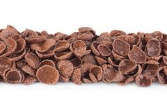 Avenas del cacao fotografía de archivo