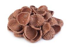 Avenas del cacao aisladas foto de archivo libre de regalías