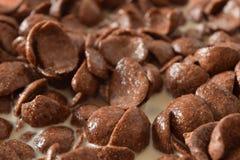 Avenas del chocolate del desayuno Foto de archivo libre de regalías