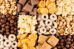 Avenas fijadas, modelo decorativo del ajedrez fondo de los cereales Imágenes de archivo libres de regalías