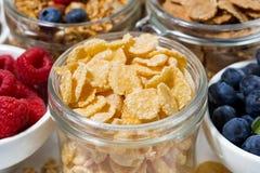 avenas y un surtido de productos sanos del desayuno Imagenes de archivo
