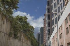 Avenida con el edificio Imagen de archivo libre de regalías