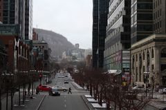 Avenida da faculdade de McGill, Montreal da baixa, Quebeque, Foto de Stock