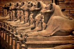 Avenida das esfinges no templo de Karnak (Luxor, Egito) Foto de Stock