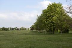 Avenida de árboles en Durdham abajo, Bristol Imagenes de archivo