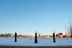 Avenida de árboles y de alambres cortados a lo largo del camino y del paisaje de la ciudad en el horizonte, invierno imágenes de archivo libres de regalías