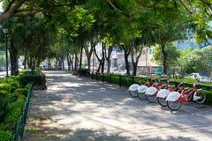 Avenida de Alvaro Obregon en la vecindad de moda de Roma Norte en Ciudad de México fotos de archivo libres de regalías