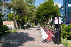 Avenida de Alvaro Obregon en la vecindad de moda de Roma Norte en Ciudad de México foto de archivo libre de regalías