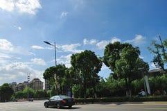 Avenida del lago Jinji Foto de archivo libre de regalías