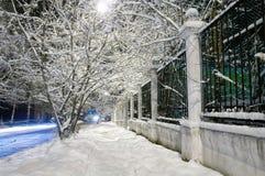 Avenida do inverno Fotografia de Stock Royalty Free