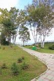 Avenida en parque Imagen de archivo libre de regalías