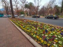 Avenida no Chile Imagem de Stock Royalty Free