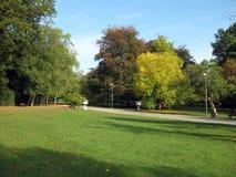 Avenida no parque Fotografia de Stock