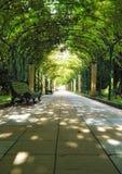 Avenida verde Imagenes de archivo