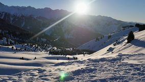 Aventura acertada de la mujer joven del Snowboarder a las montañas nevosas de las montañas, suizo Actividades sanas de la snowboa almacen de metraje de vídeo