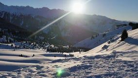 Aventura bem sucedida da jovem mulher do Snowboarder às montanhas nevado dos cumes, suíço Atividades saudáveis do Snowboard e do  vídeos de arquivo