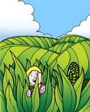 Aventura da criança: Exploração agrícola do campo de milho Foto de Stock Royalty Free