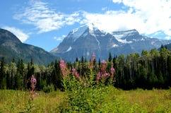Aventura da montanha Foto de Stock