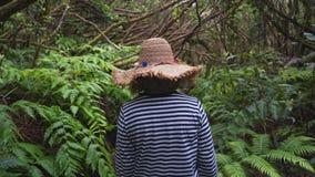 Aventura de una mujer en la selva mística de una selva tropical tropical metrajes