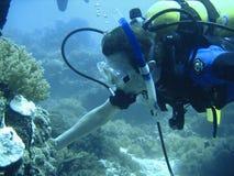 Aventura del buceo con escafandra Imágenes de archivo libres de regalías